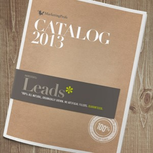 Calalog MarketingProfs 2013